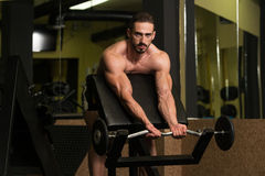 Bodybuilder Performing Biceps Curls With A Barbell Royalty Free Stock Photo