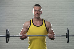 Bodybuilder Performing Biceps Curls With A Barbell Royalty Free Stock Photography
