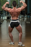 Bodybuilder Performing Rear Double Biceps Pose Royalty Free Stock Photography
