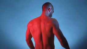 Bodybuilder Performing Rear Lat Spread Pose and posing for studio session. Male Fitness Model Flexing muscles, isolated on blue background. Studio shot stock video footage