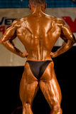 Bodybuilder posing Royalty Free Stock Photo