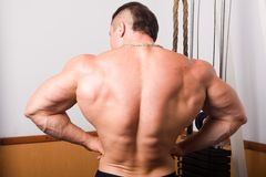 Bodybuilder posing Royalty Free Stock Images