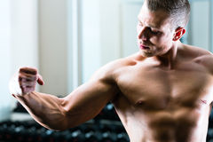 Bodybuilder posing in Gym Royalty Free Stock Photography