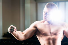 Bodybuilder posing in Gym Royalty Free Stock Image