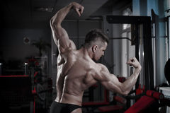 Bodybuilder posing in gym. Perfect muscular male back Royalty Free Stock Images