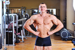 Bodybuilder posing in gym - portrait Stock Images