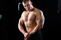 Bodybuilder posing in Gym Royalty Free Stock Photo