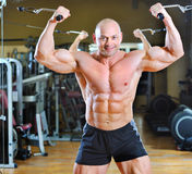 Bodybuilder posing at gym - strong man torso Stock Photography