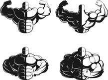 Bodybuilder posing. Illustration vector, bodybuilder showing muscles Stock Photos