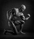 Bodybuilder posing. Muscular male bodybuilder posing in studio stock photography