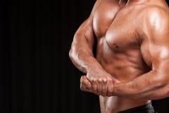 Bodybuilder posing. royalty free stock photo