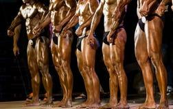 Bodybuilder pozuje w studiu Obraz Royalty Free