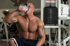 Bodybuilder With Protein Shaker Stock Photo