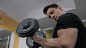 Bodybuilder pumping muscle in the gym, do fitness.  stock video