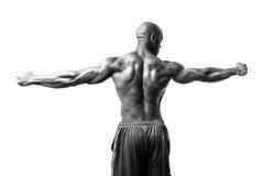Bodybuilder ręki Rozprzestrzeniać Obraz Stock
