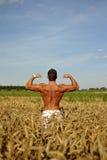 Bodybuilder restant taille-profond dans le domaine Image libre de droits