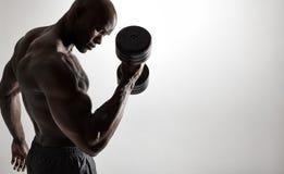 Bodybuilder robi wagi ciężkiej treningowi dla bicepsów Zdjęcie Stock