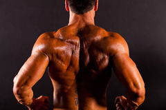 Bodybuilder's back. Rear view of a bodybuilder's back Royalty Free Stock Photo