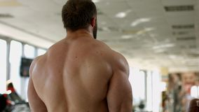 Bodybuilder's strong back. stock footage