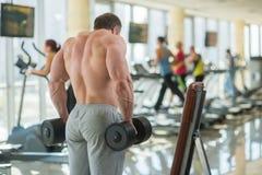 Bodybuilder's strong back. Royalty Free Stock Photos
