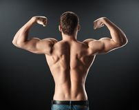 Bodybuilder showing muscles back and arms Royalty Free Stock Image