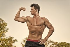 Bodybuilder showing muscles, biceps and triceps. Man or sportsman flexing arm on white sky. Athlete with bare torso, six pack and ab. Fitness and sport royalty free stock photos