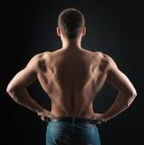 Bodybuilder shows dorsi. Bodybuilder showing muscles back in the dark Stock Photos