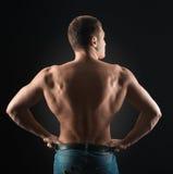 Bodybuilder shows dorsi. Bodybuilder showing muscles back in the dark Royalty Free Stock Photo
