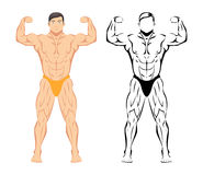 Bodybuilder. Sport and fitness, muscle body, bodybuilding healthy, sketch and colored drawing. Vector illustration Stock Photography