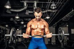 Bodybuilder sportsman working out with a barbell in gym, doing biceps training. Stock Photo