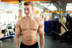 Bodybuilder standing in the gym Stock Photography