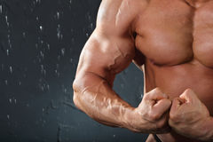 Bodybuilder stands and shows muscles Royalty Free Stock Photos