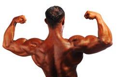 Bodybuilder strong Royalty Free Stock Photos