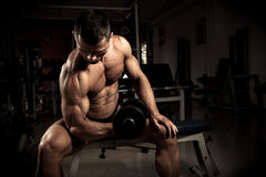 Bodybuilder. Strong bodybuilder with dumbbell in the gym Royalty Free Stock Photography