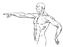 Bodybuilder. strong muscular man. athlete or fighter. Sketch Vector Illustration Royalty Free Stock Photography