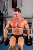 bodybuilder szkolenie Obrazy Stock