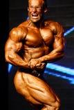 Bodybuilder target112_0_ Zdjęcia Royalty Free