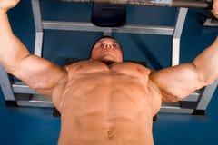 Bodybuilder training Royalty Free Stock Image