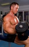 Bodybuilder training. A Bodybuilder training his bicep Royalty Free Stock Photo