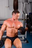 Bodybuilder training Stock Photos