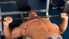 Bodybuilder training Stock Image