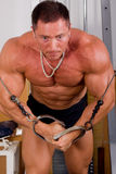 Bodybuilder training Stock Image