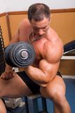 Bodybuilder training Stock Photos