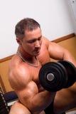 Bodybuilder training Royalty Free Stock Images