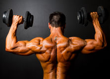 Bodybuilder training. Rear view of bodybuilder training with dumbbells on black background Stock Photography