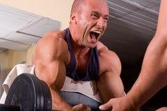 Bodybuilder training Royalty Free Stock Photo