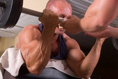 Bodybuilder training Stock Photography