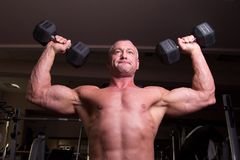 Bodybuilder training Royalty Free Stock Photos