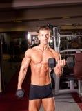 Bodybuilder training Stock Images