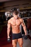 Bodybuilder training Royalty Free Stock Photos
